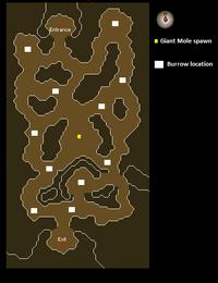 Falador Mole Lair map