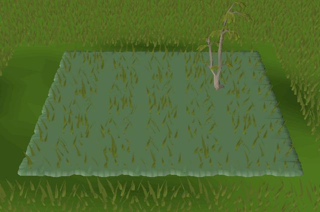 File:Forest habitat built.png