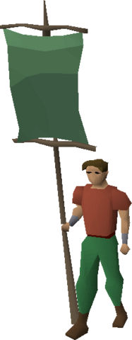File:Green banner equipped.png