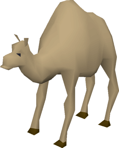 File:Ollie the Camel.png