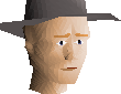 File:Grey hat chathead.png