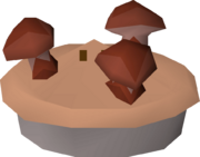 Mushroom pie detail