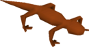 Red salamander (Hunter)