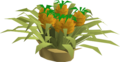 Pineapple plant.png