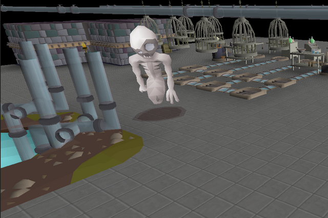 File:Homunculus in dungeon.png
