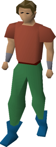 File:Wizard boots equipped.png