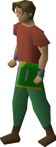 File:Book of balance equipped.png