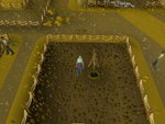 Emote clue - beckon digsite winch