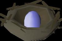 Bird nest (blue egg) detail