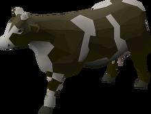 Lobby Cow
