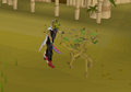 Cutting medium jungle.png