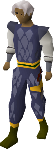 File:Blue d'hide (g) set equipped.png