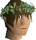 Druidic wreath chathead v1.png