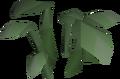 Dock leaf built.png
