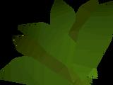 Ranarr weed