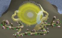 Shielded portal
