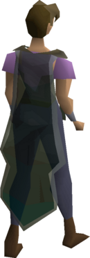 Xeric's guard equipped