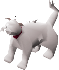 Lazy cat (white) pet