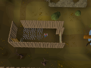 Hot cold clue - Barbarian agility course