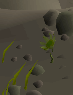 File:Troll Thistle.png