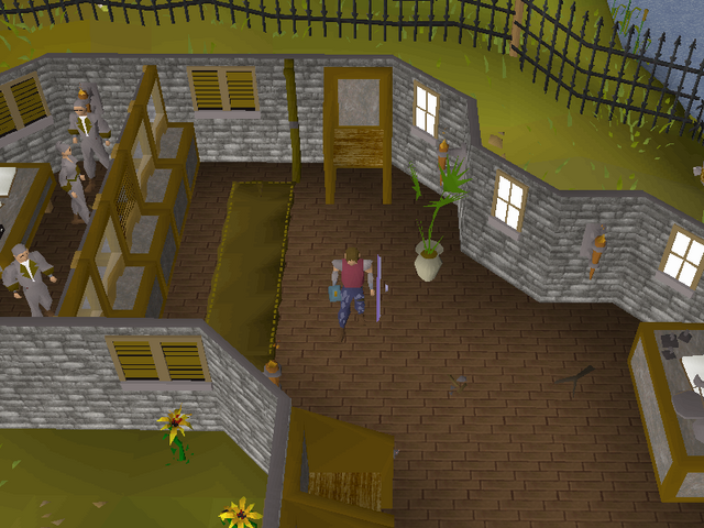 File:Emote clue - raspberry fishing guild bank.png