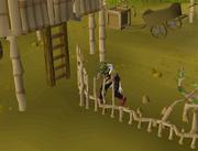 Repairing village fence