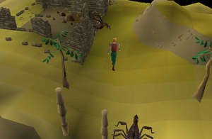 runescape 2007 how to get to cairn isle