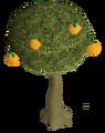 Orange tree.png