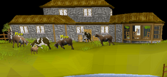 Crafting Guild Cows