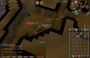 Edgeville Dungeon Hobgoblin safespot