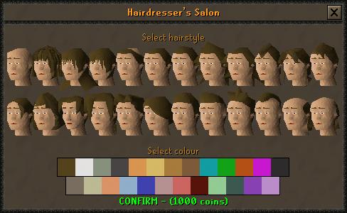 File:Hairdresser's Salon interface.png