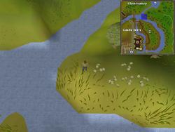 Map clue solution Castle Wars