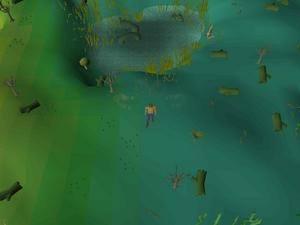 Hot cold clue - Mort Myre Swamp