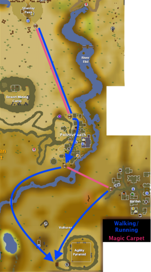 Agility Pyramid Route