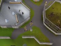 Cryptic clue - dig ardougne zoo