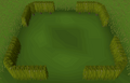 Tall box hedge built.png