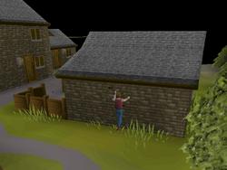 Draynor Village Agility Course 1