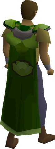 File:Cabbage cape equipped.png