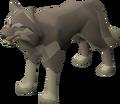 Desert Wolf.png