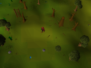 Hot cold clue - Southwest Tree Gnome Stronghold