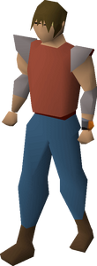 Zenyte bracelet equipped