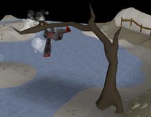 Climbing the tree