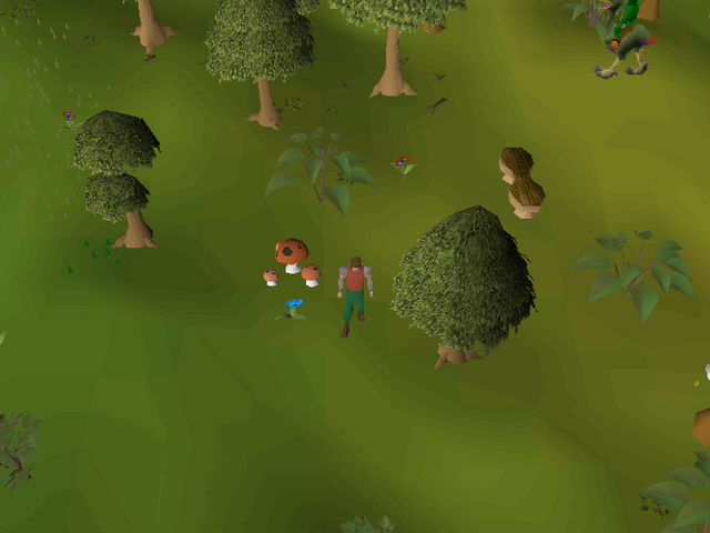 File:Hot cold clue - south of the Tree Gnome Stronghold.png