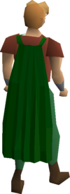 Fremennik green cloak equipped