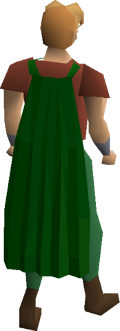 File:Fremennik green cloak equipped.png