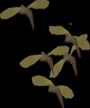 Proboscis runescape wiki