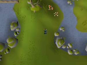 Hot cold clue - East of Elf Camp