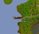 Port Tyras