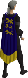 Champion's cape equipped