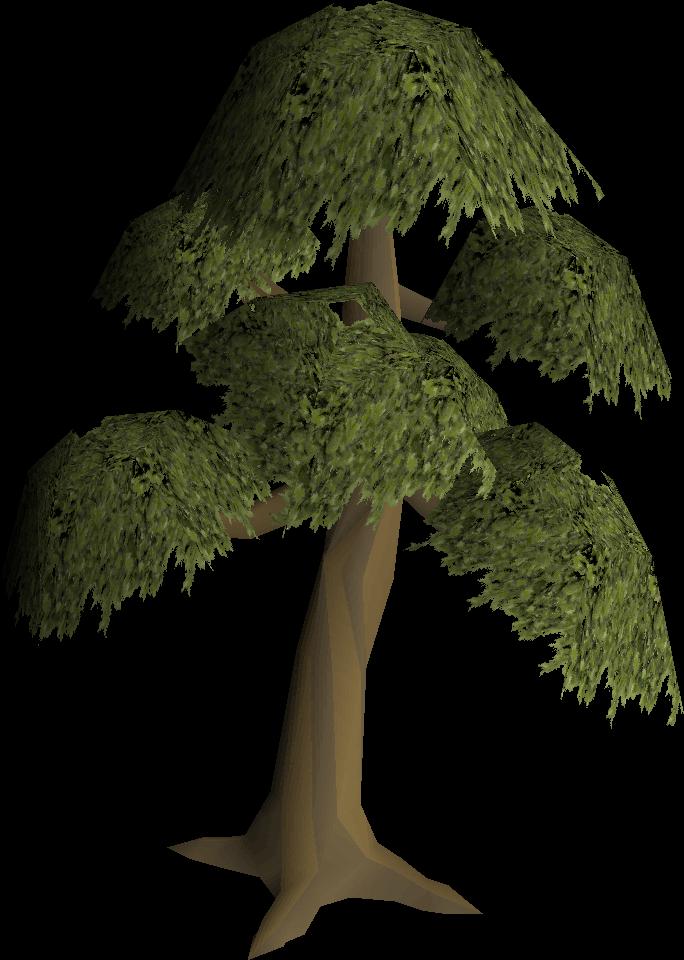 Yew tree (Construction) | Old School RuneScape Wiki | FANDOM